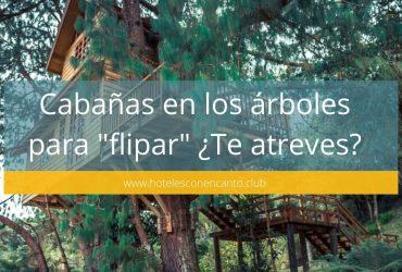 12 Cabañas en los árboles para flipar ¿te atreves a dormir en un árbol?